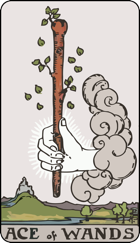 Ace of Wands icon