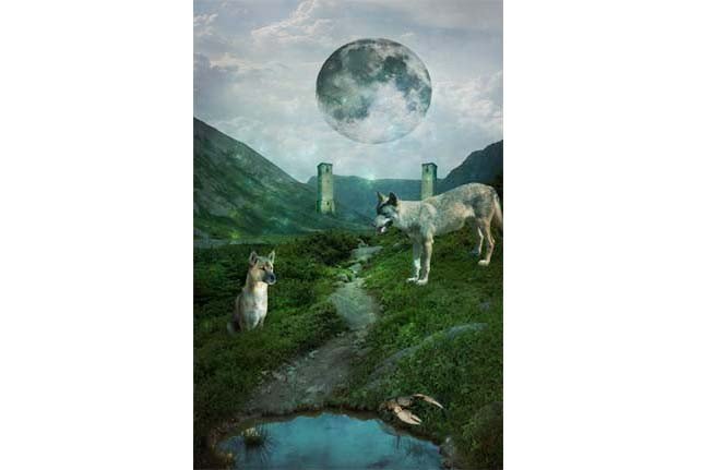 The-Moon-Tarot-Card